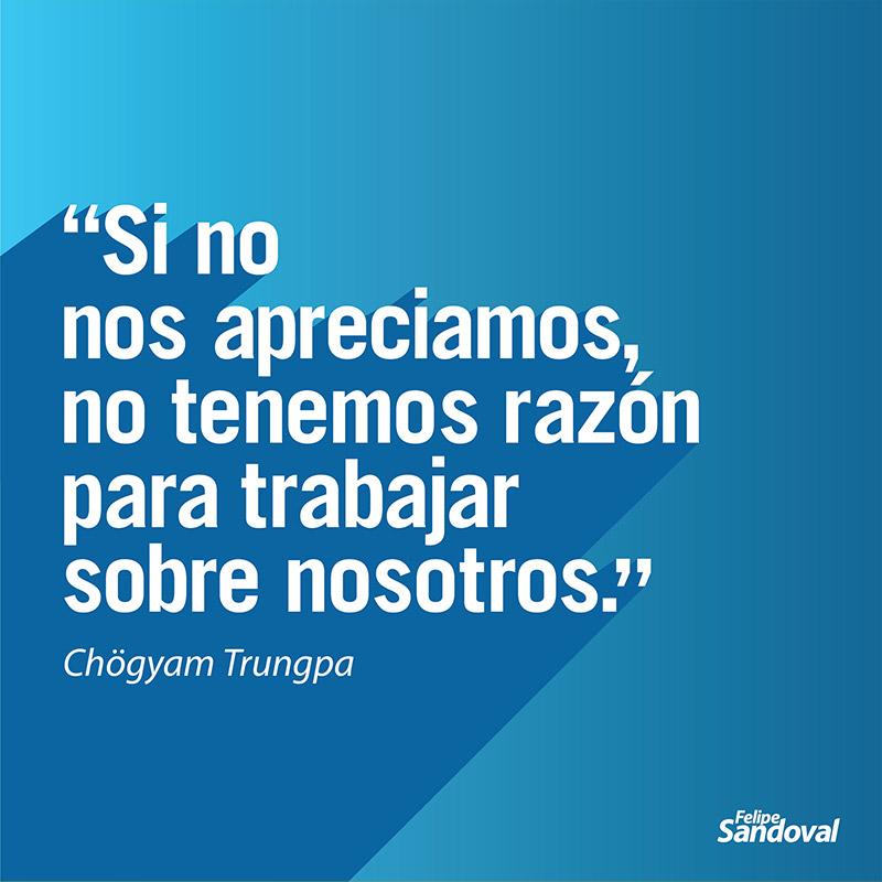 """""""Si no nos apreciamos no tenemos razón para trabajar sobre nosotros."""" - Chögyam Trungpa"""